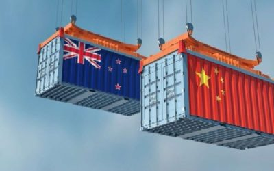 "How many eggs, in how many baskets"" – new report on NZ/China trade"